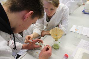 Die Zukunft liegt unterm Mikroskop: Biotechnologieteage an der BTU