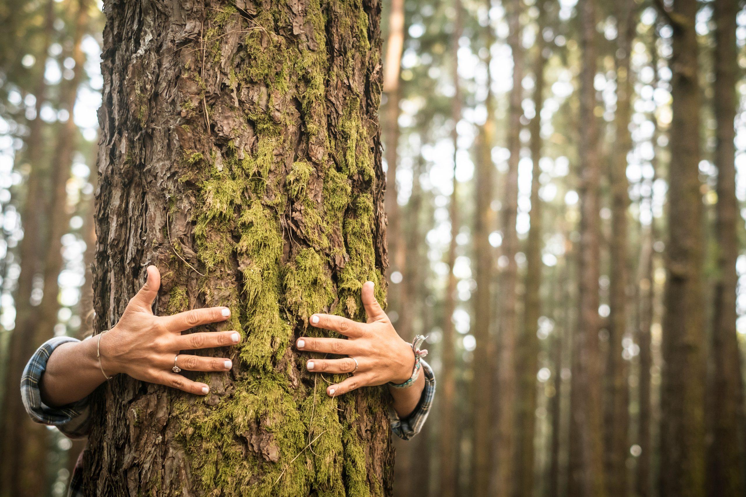 Berufe, die die Welt verändern – tu Gutes für die Umwelt